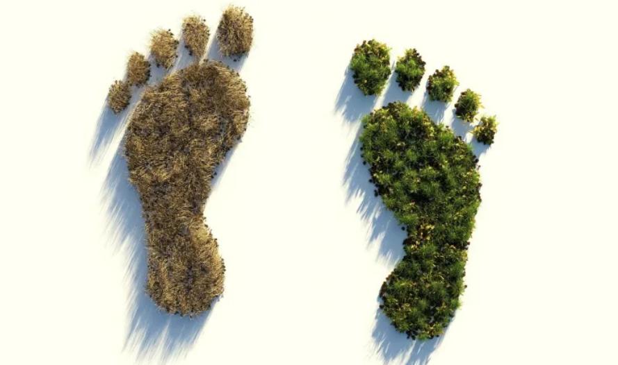 Ökologischer-Fussabdruck-wie-viel-Fläche-brauchen wir? — MuW-Nachrichten.de