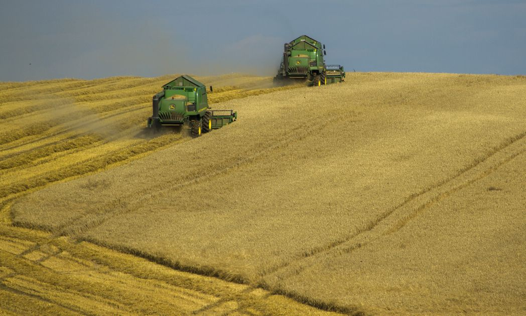 UN fordern Kurswechsel in der Landwirtschaft
