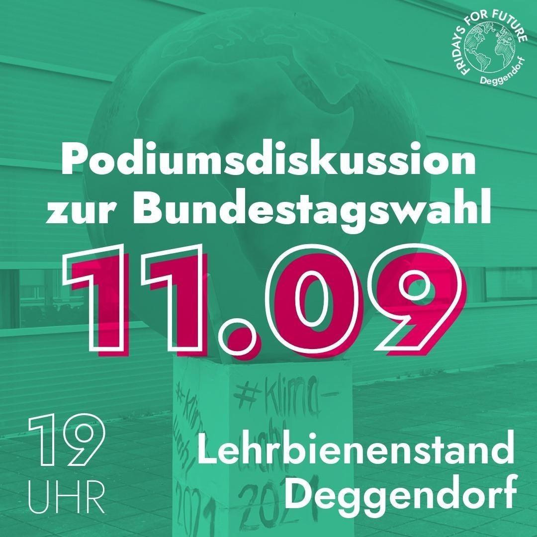 Podiumsdiskussion mit Matthias Schwinger  bei Fridays for Future